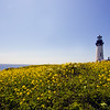 Oregon Coast - Yaquina Head Lighthouse :