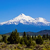 The Majesty view of Mt Shasta