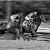 Santa Anita Photographer's Day (9/28/12) :